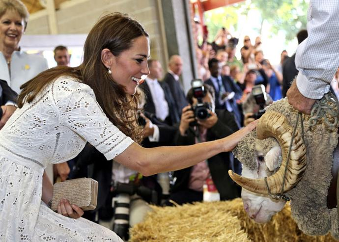 <strong>April 18, 2014</strong> <br><br> This pretty eyelet dress from Zimmermann was the perfect look for petting a ram at the Royal Easter Show in Sydney.