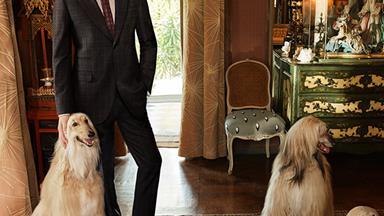 Tom Hiddleston and 3 Afghan Hounds Are the the New Faces of Gucci