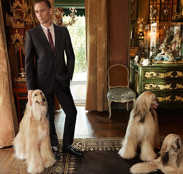 Tom Hiddelston Gucci Tailoring Campaign