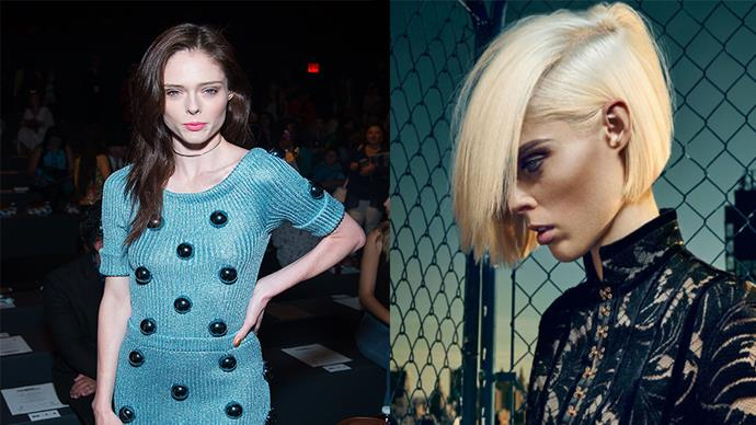<strong>Coco Rocha</strong> <br><br> 28-year-old model Coco just debuted a platinum blonde bob in a new campaign with Balmain. It's her first time going blonde ever, and we love it. <br><br> Image (right): Balmain