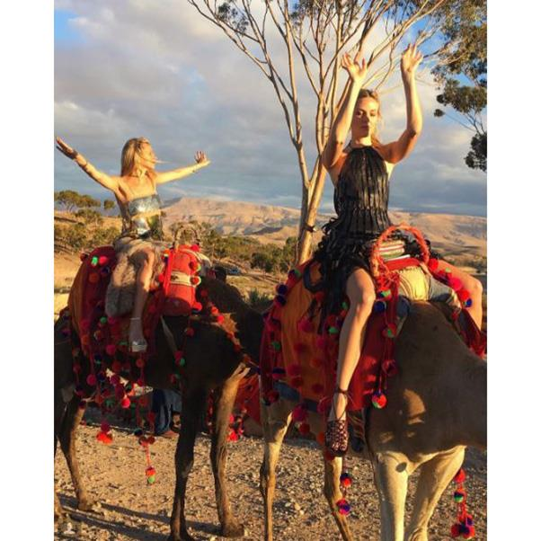 """<strong>Guests travelled by camel</strong><br><br> Instagram: <a href=""""https://www.instagram.com/p/BLrokNqA38C/?taken-by=tracydoob"""">@tracydoob</a>"""