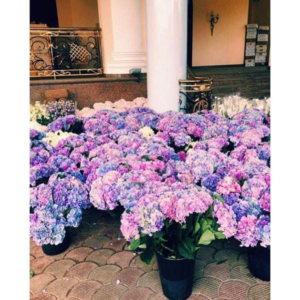 <strong>The flowers</strong><br><br> Wedding two<br><br> Image: Instagram