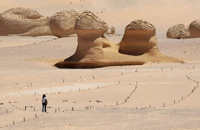 """<strong>1. Wadi El-Hitan: Western Desert of Egypt</strong> <br><br> <a href=""""http://whc.unesco.org/en/list/1186"""">Wadi El-Hitan</a>, or Whale Valley, is located in the Western Desert of Egypt and was designated a World Heritage Site because it features impressive numbers of fossils of an early whale species called Archaeoceti. These fossils are considered evidence that whales evolved from a land species to the ocean mammal we know today."""