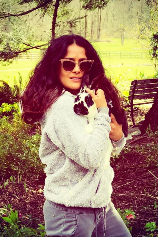 """<strong>Salma Hayek</strong> <p><p> """"My #bunny Zebra and I wish you a #happy Easter 🐣 my conejo Zebra y yo les deseamos felices pascuas #badhairday #nature"""" <p> Image: <a href=""""https://www.instagram.com/p/BS9OGgmhQWg/"""">@salmahayek</a>"""