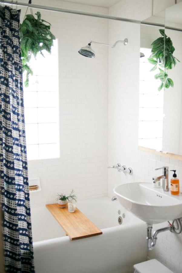 <strong>Shower Plants</strong> <br><br> Turn your shower into a spa-like experience with this easy Pinterest trend. Plants not only clean the air, but also eliminate bacteria which makes it a perfect addition to your bathroom.