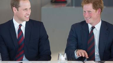 Prince William's Response To Prince Harry's Engagement Is Priceless