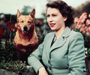 The Queen's Last Remaining Corgi Has Just Died