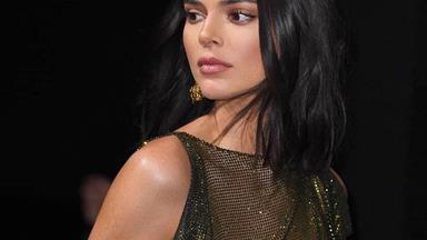 Kendall Jenner Wore A Completely Sheer Dress To An Event At Cannes