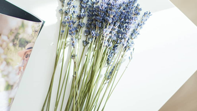 Lavender Oil May Be The Secret To Soothing Your Skin's Stress Levels