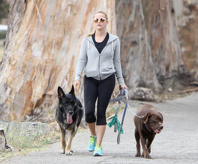Reese Witherspoon walking with her dogs