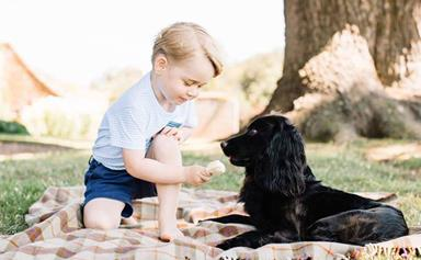 Forget about having another baby, science confirms your kid would rather a pet
