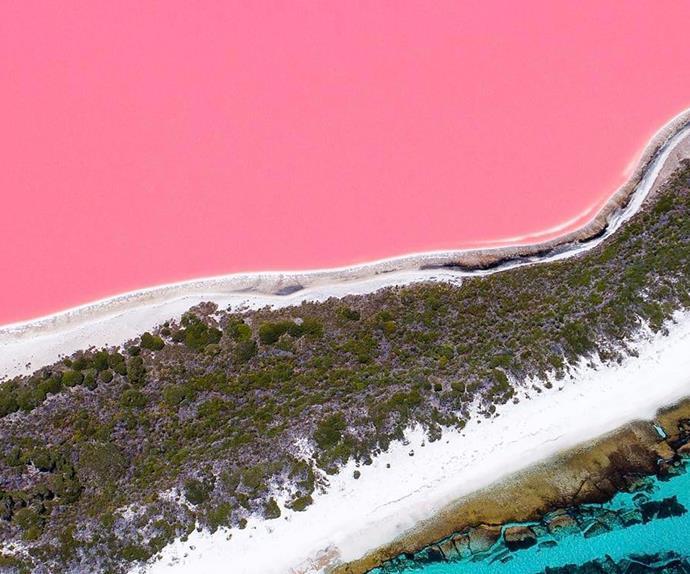 Lake Hillier pink western australia image credit salty wings instagram
