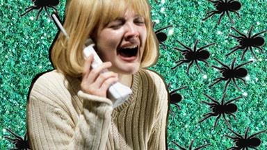 Meanwhile in Australia... a spider plague is coming