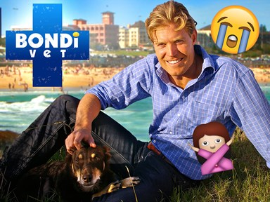 Bondi Vet is being recast and yes, that means Dr Chris Brown is not coming back