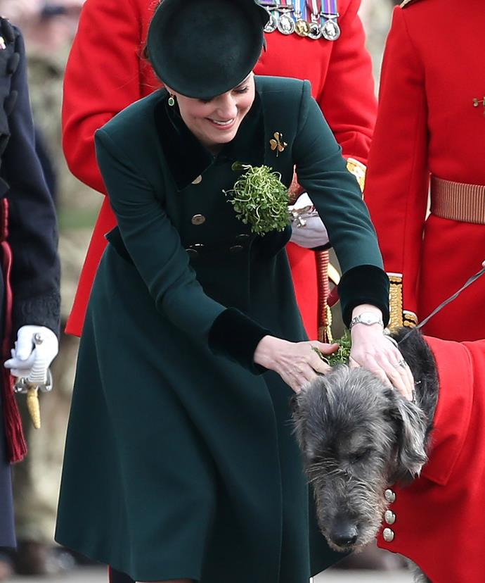 Presenting a shamrock sprig to the Irish Wolfhound Domhnall brought a smile to Kate's face!