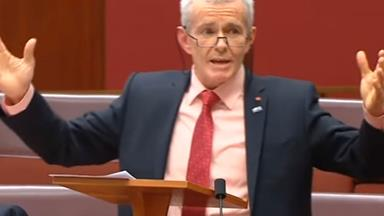 "One Nation senator says ""some girls"" like being wolf-whistled"