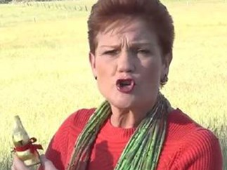 WARNING: Pauline Hanson is coming for your Easter eggs