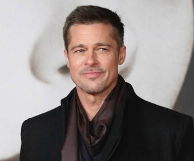 Brad Pitt went to VIP rehab following shock split from Angelina