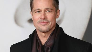 Brad Pitt went to VIP rehab following shock split from Angelina