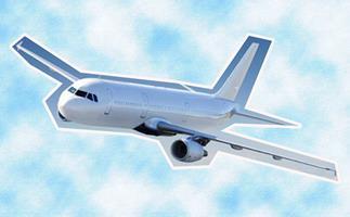 Politicians' children will no longer get free business class flights