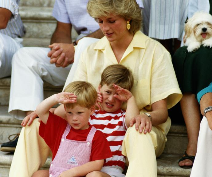 The princes were just 15 and 12 respectively when their mother died in a car crash.