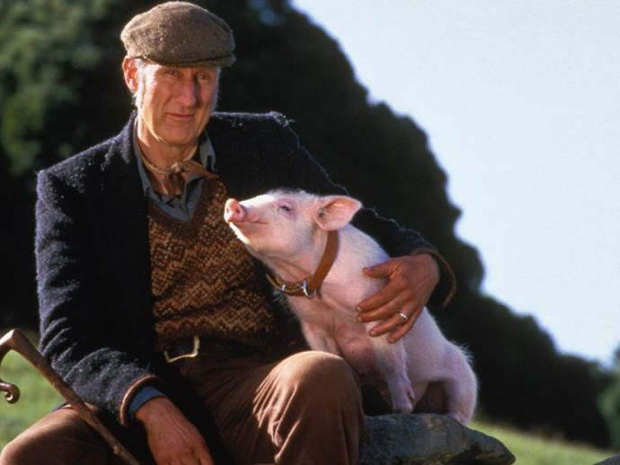 Babe actor James Cromwell sentenced to jail