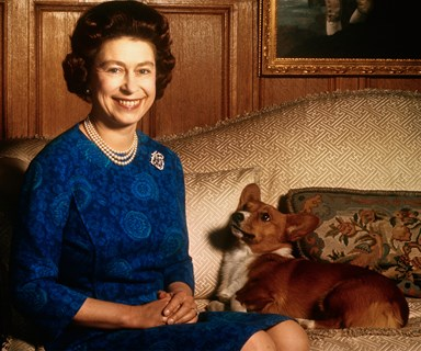 Your attention: Queen Elizabeth has a new member in her corgi family