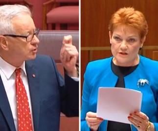 Doug Cameron's take down of Pauline Hanson is as moving as it savage