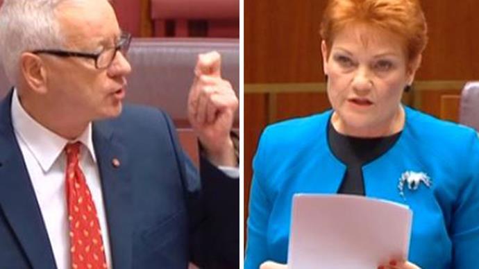 Doug Cameron's take down of Pauline Hanson is as moving as it savage