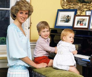 Princess diana golliwogs toys prince harry prince william