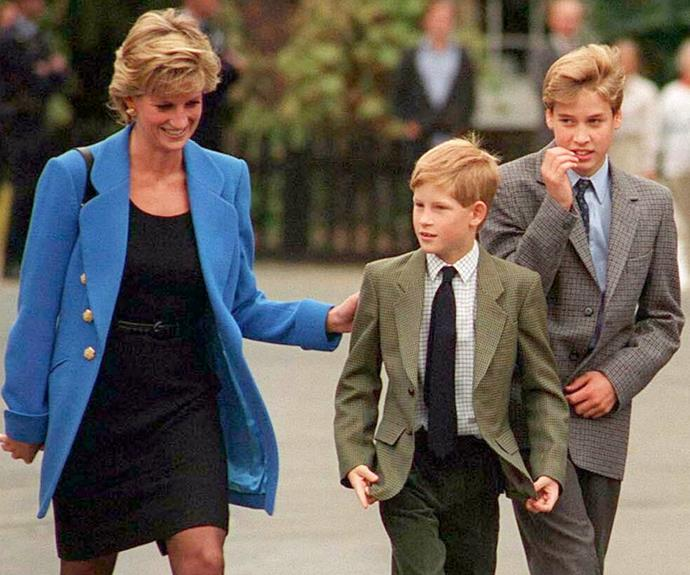 """The princes hope the revealing new doco will act as their """"final word"""" on the tragic subject of their beloved mother's passing."""
