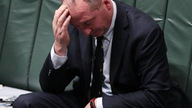 Not a joke: Barnaby Joyce nominated for Kiwi of the Year following citizenship bungle