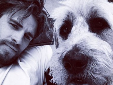 Liam Hemsworth named Doggy Dad of the year and we have the swoon-worthy pics to prove it