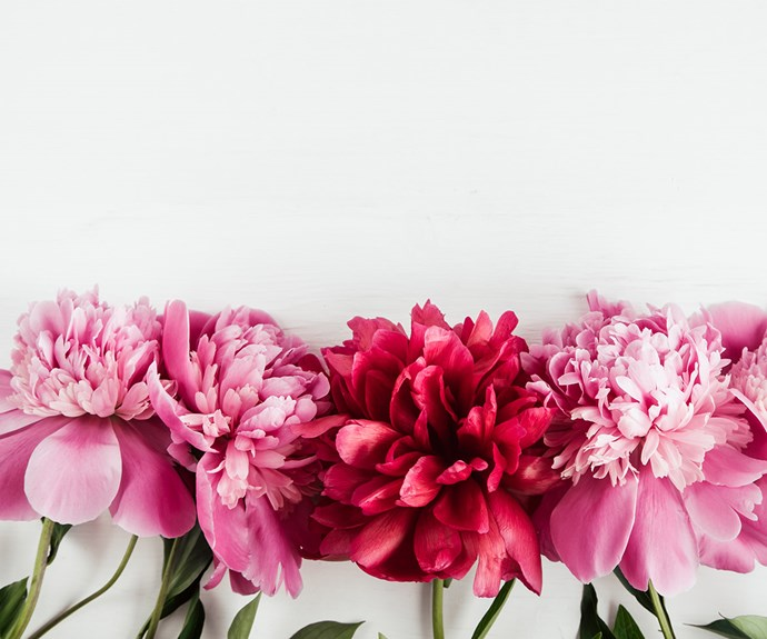 The scarily accurate things your birth flower says about you