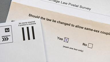 """I'm gay but my family are voting 'No' in the same-sex marriage postal vote"""