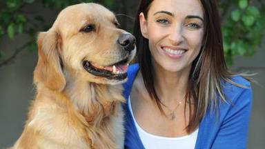 Dr Katrina Warren has 4 expert tips for travelling with pets