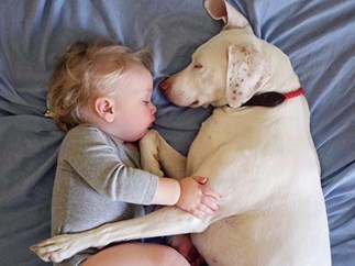 Neglected dog lives a life of fear until he meets baby Archie