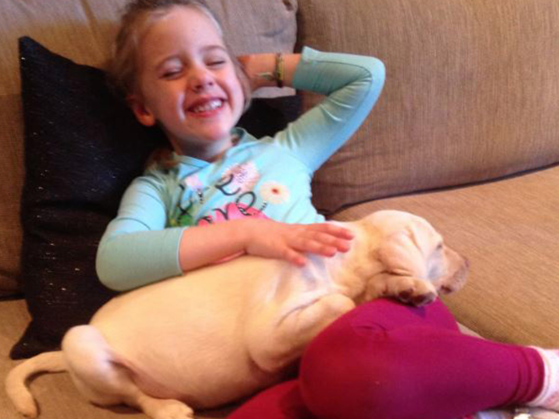 Puppy thieves return dog to 'devastated' four-year-old girl