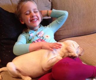 Feel good Friday: Melbourne Preschooler has stolen puppy returned