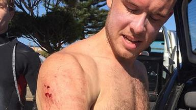 Surfer who punched shark in the face says he has Mick Fanning to thank for his escape