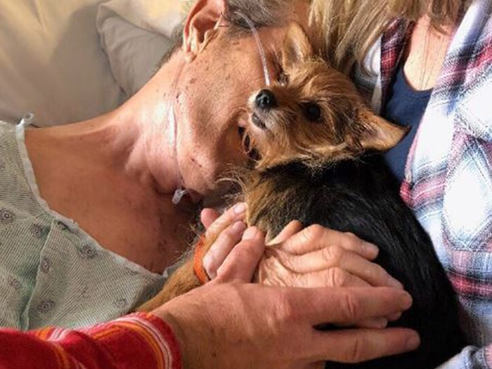 Nurses sneak dog in for dying man's beautiful goodbye