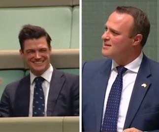 Liberal MP Tim Wilson proposed to his partner during a speech in the lower house
