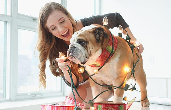 Paw-fect Christmas gifts for very good pets