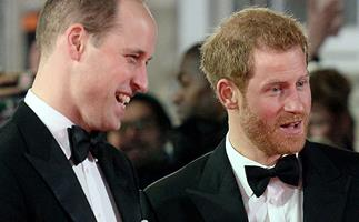 Princes Harry & William