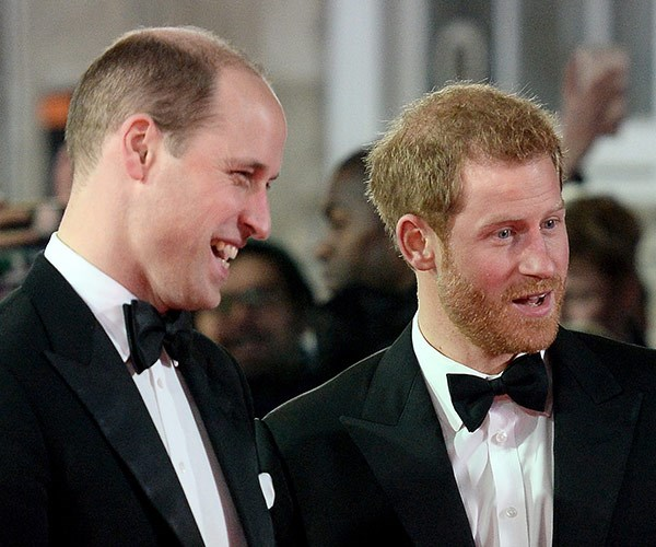 Princes Harry & William