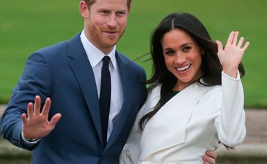 Prince Harry gets Meghan Markle a puppy for Christmas