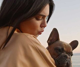 How Kendall Jenner trains a dog is worth watching