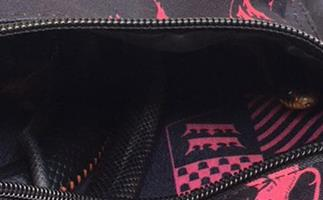 This Queensland girl got the shock of her life when she found a snake hiding in school bag