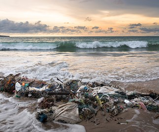 The beautiful Bali you remember is no more - disgusting trash levels in Bali oceans captured by diver