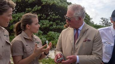 When Bindi Irwin met Prince Charles